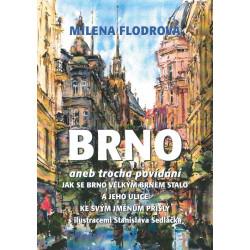 Brno aneb trocha povídání jak se Brno velkým Brnem stalo a jeho ulice ke svým jménům přišly